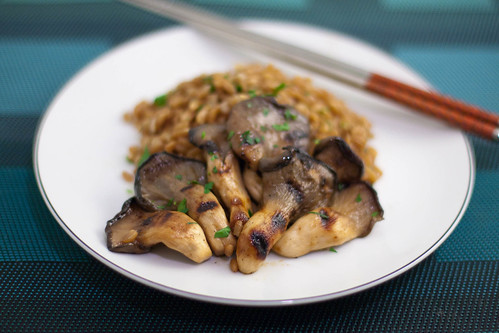 miso grilled oyster mushrooms + buttered farro