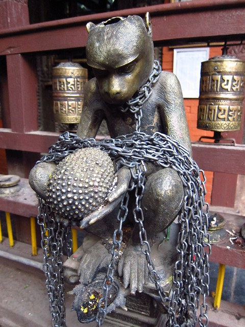 Monkey with Chains and Fruit at the Golden Temple