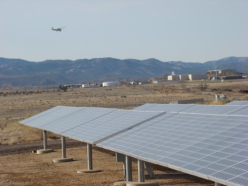Converting airport grasslands to biofuel, solar or wind production may not only provide more environmentally sound alternative energy sources, but also increase revenue for airports and reduce the local abundance of wildlife hazardous to aircraft.  U. S. Department of Agriculture research is helping shed light on this promising concept. USDA photo by David Bergman.