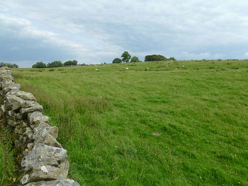 Site of Milecastle 50 SW