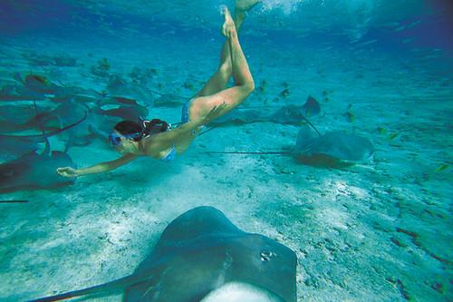 Underwater Activities & Exploration