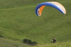 Paraglider #4