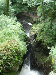 View from the bridge at Aira Force