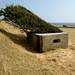 Diagonal Wind by Bart van Damme