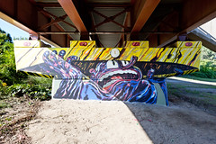Living Walls - Albany, NY - 2011, Sep - 09.jpg by sebastien.barre
