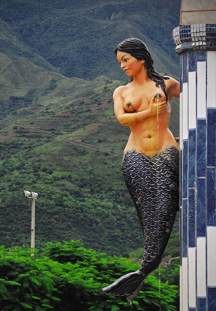 Sirena quillabandida