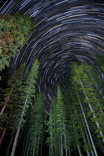 Washington Lake Star Trails