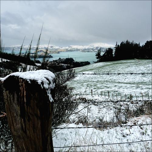 new sky snow dan landscape lumix wire scenery view post web mount zealand nz dunedin goodwin cargill fz35 pommedan