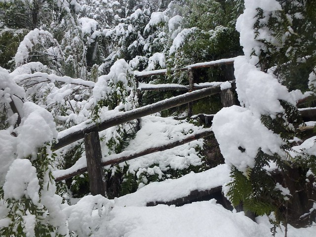 """Part of the hiking trail  in Villarrica Volcano In Pucon Chile National Park covered in snow"""