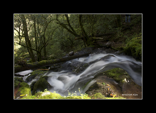 parque naturaleza nature rio river flow hector chico nacional calma aiza hidalgo elchico parquenacionalelchico elchicohidalgo