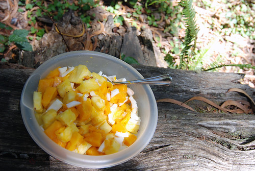 Prehike Snack - Mango, Papaya and Coconut Fruit Salad