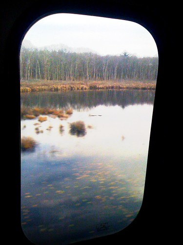 lake window train