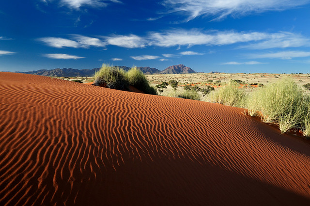 Dune Ripples and Namib Desert