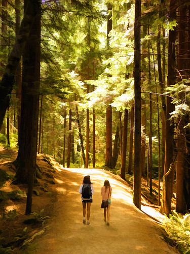 travel trees canada vancouver forest walking landscape woods bc canadian hike vancouverisland lynncanyon victoriabc nationalgeographic lynnvalley travelphotography saariysqualitypictures zedzap