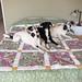 My second quilt_23 by MissMarnie