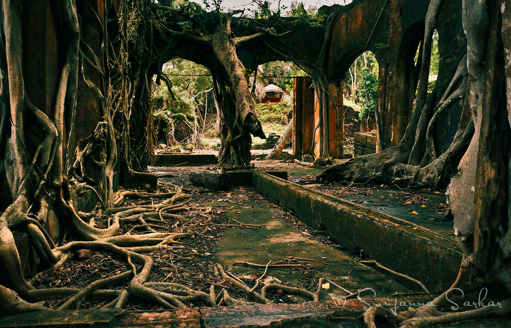 Derelict office on Ross Islands, Andamans