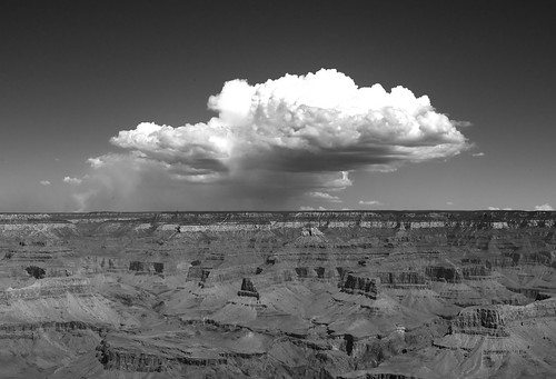 Cloud on the Grand Canyon