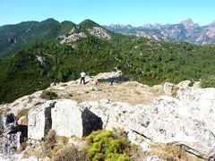 Arrivée au sommet du Castellacciu : Dumé près de la tour ruinée avec la crête de Nuvra et Bavella en arrière-plan