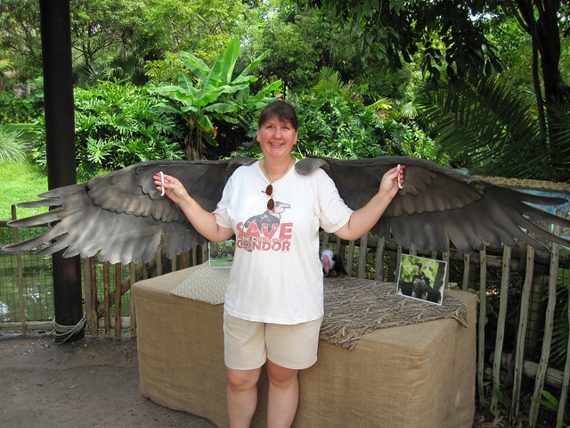 I'm a vulture!