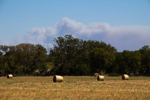 austin texas laborday wildfire bastrop