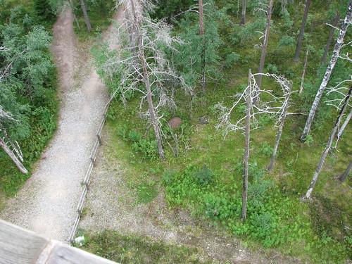 sota lauhanvuori summitsontheair oh6fqi ohjs032 lauhanvuorenkansallispuisto lauhanvuorinationalpark
