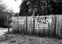 Terror squod
