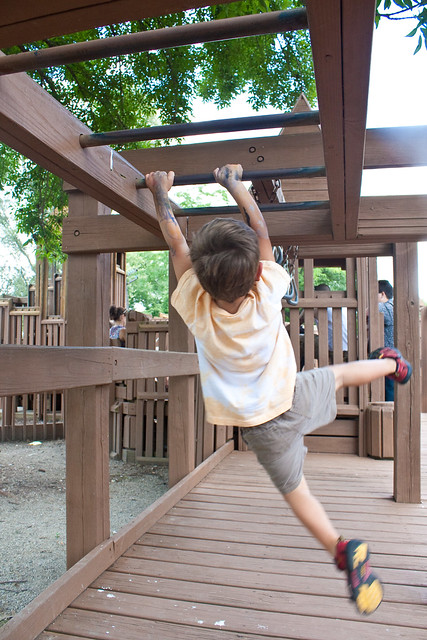 Junior Monkey Bars