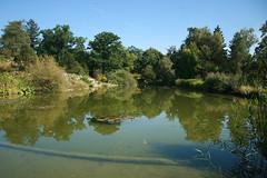 Großer See - Botanischer Garten