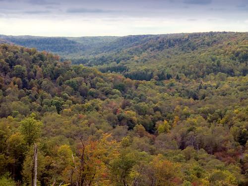 summer mountains forest landscape pennsylvania overcast hills creativecommons appalachianmountains kinzuabridgestatepark pennsylvaniawilds mckeancounty alleghenyplateau kinzuagorge