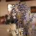 Small photo of Living Room Through Lavendar