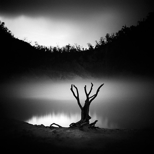trees white mist black reflection tree silhouette fog mystery dark square photography volcano branch hill dream surreal caldera stump layers sulfur lowkey mystic artlibres flickrstruereflection1