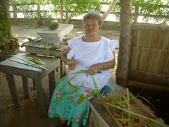 Weaver floren Paulino, 2009