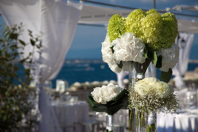 Matrimonio 31 Luglio 2011 - Composizioni Buffet con Ortensie bianche e verdi,...