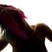 2011-07-13_8602_colour