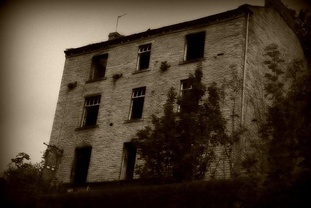 Dicky Mints, Halifax