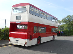 Rear shot of Manchester's iconic bus