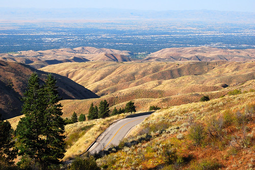 road trees foothills mountains fall nature scenery idaho pines lanscapes bogusbasin boisearea