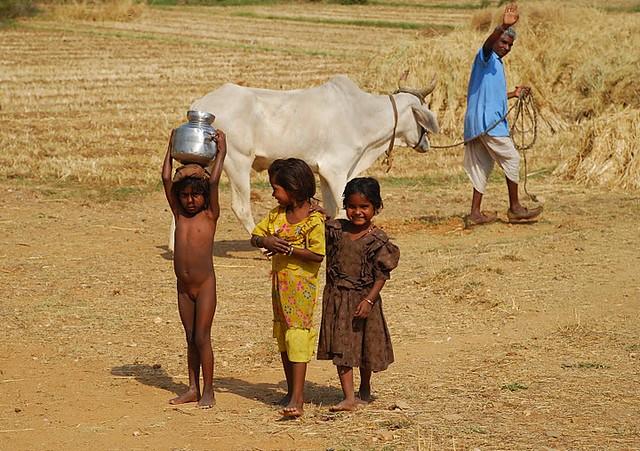 Children collecting water from a haffir   Children collect