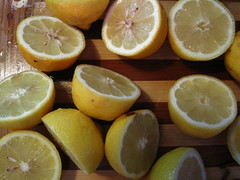 lemon-lime(0.0), produce(0.0), tangelo(0.0), citrus(1.0), orange(1.0), lemon(1.0), meyer lemon(1.0), fruit(1.0), food(1.0), sweet lemon(1.0), bitter orange(1.0), citron(1.0), lime(1.0),