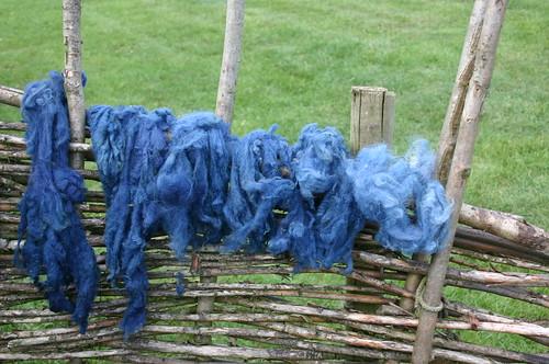 Woad dyed fleece