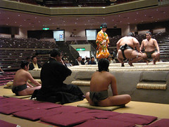sumo(1.0), sport venue(1.0), contact sport(1.0), sports(1.0), combat sport(1.0), muscle(1.0), wrestling(1.0),