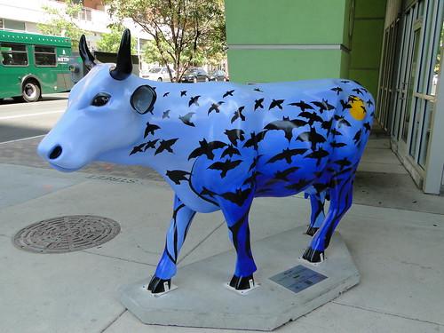 Cow Parade - Austin, TX