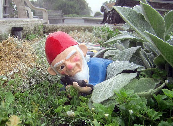 When my brain leaks the drops drip here portfolio aka for Combat garden gnomes