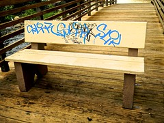 Bench on Pier
