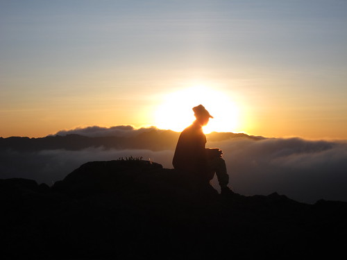 trekking geotagged tanzania bushwalking mtkilimanjaronationalpark geo:lat=3054481 geo:lon=37275536