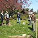 Seward Park's Centennial Ceremony Cherry Tree Planting #2