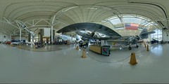 Spruce Goose & Sons