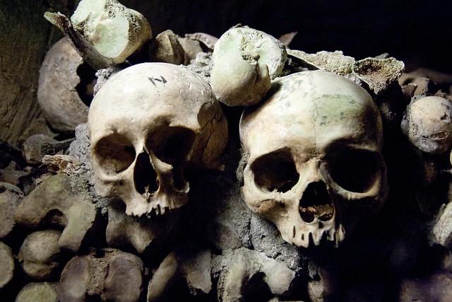 D Skull Photo Jewels Ring Ring Artist Calling