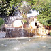 plaza patos