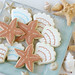 Shell and Starfish Cookies